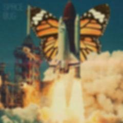 Space Bug 1000px.jpg