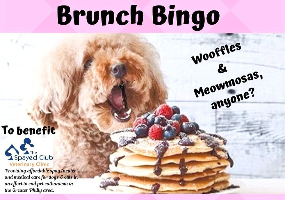 2020%25252520Brunch%25252520Bingo%25252520Flyer%25252520w_o%25252520sponsors%25252520FB%25252520size