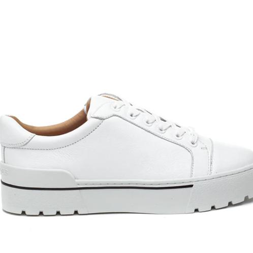 Eve Sneaker