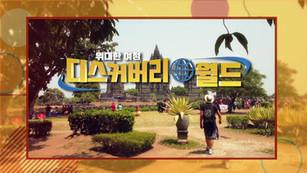 DESCUBRIR en NATV, Corea del Sur