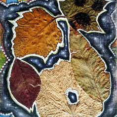 Leaf Galaxy