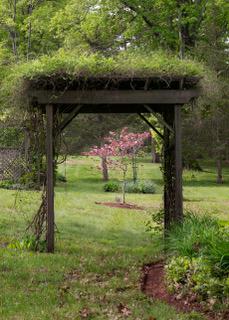 Garden Quilt Day May 2017