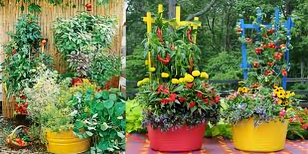 FREE Garden Lecture: Vegetable Gardening in Containers, NEW