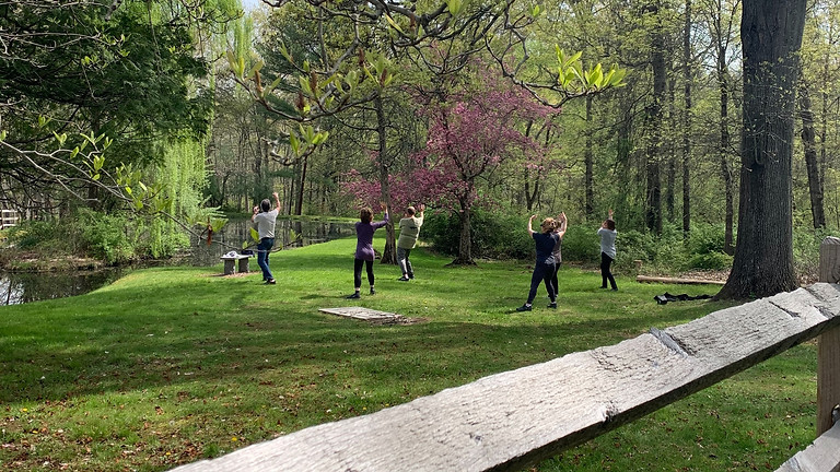 Saturday QiGong & Tai Chi Class at Whittemore