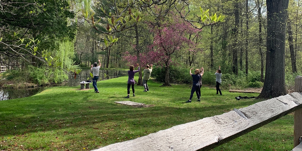 Wednesday QiGong & Tai Chi Class at Whittemore
