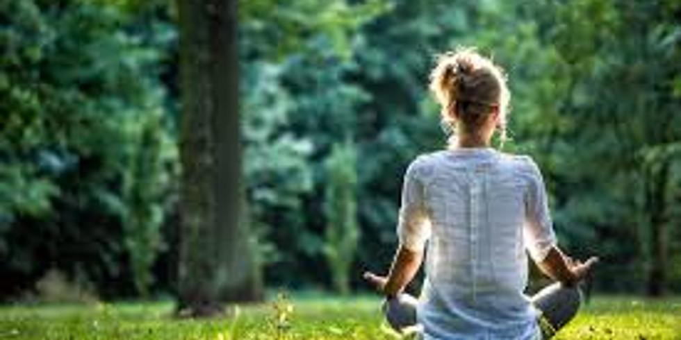 Mindfulness Guided Walk