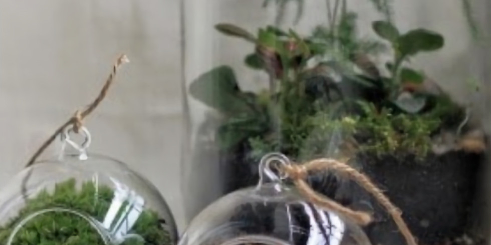 FREE Garden Lecture: Terrariums: Yesterday, Today and Tomorrow
