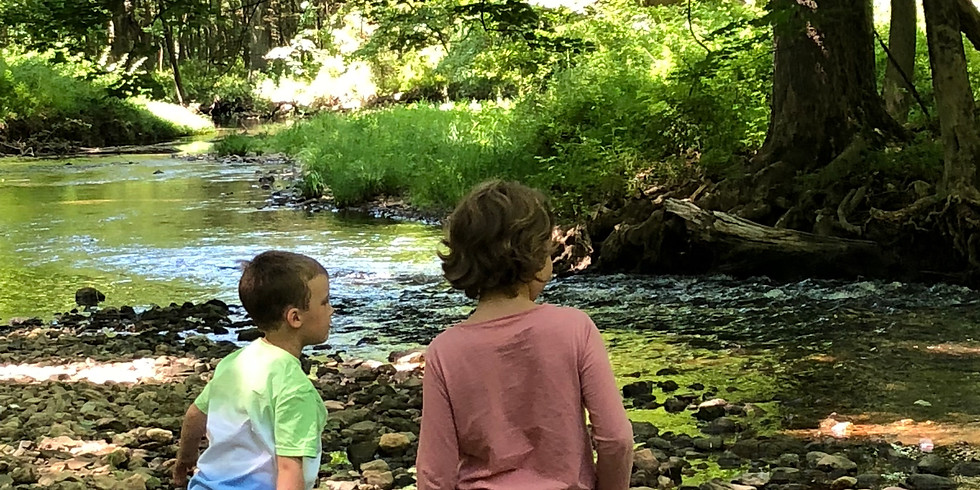 Children's Nature Walk - Every Saturday, with Naturalist David Tompkins