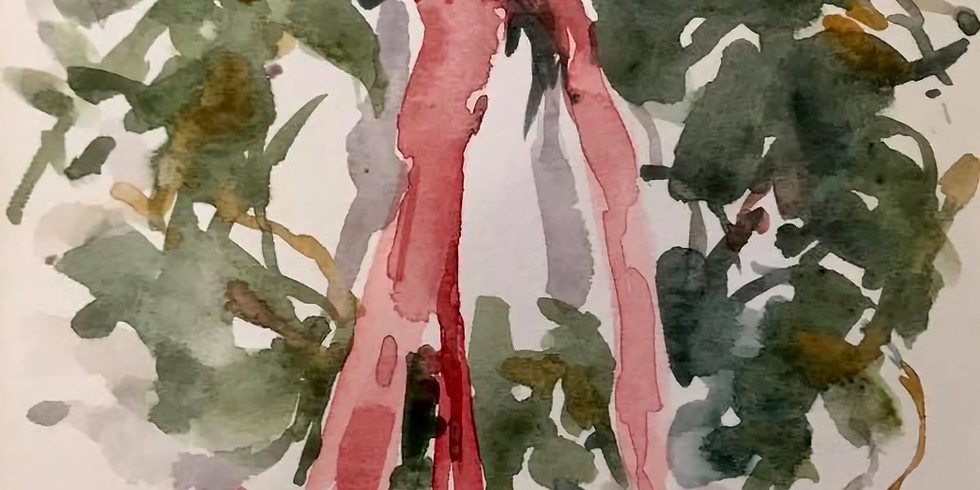 Watercolor: Pure & Simple in DECEMBER (1)