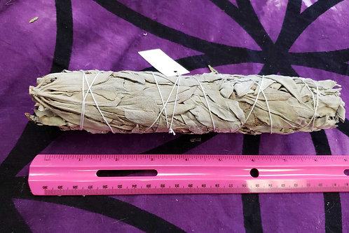 "8"" White Sage smudge stick"
