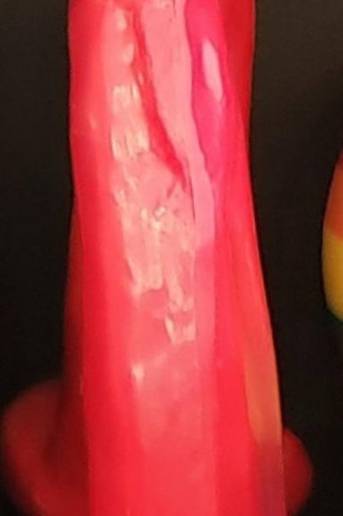 Penis with testicals