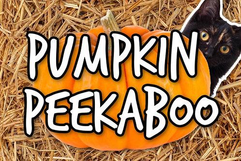 Pumpkin Peekaboo Preschool On Screen Game