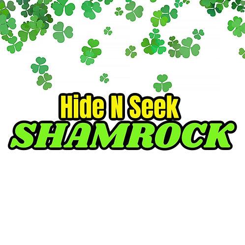 Hide N Seek Shamrock Screen Based Game