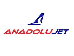 Anadolu jet Hakkındaki Tüketici Şikayetleri
