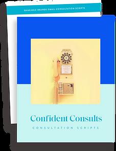 Consultation ScriptGraphic.png