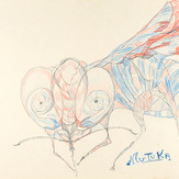 Lápis cera e grafite sobre papel / wax pencil and pencil on paper | 1972 | 36,3 x 55,2 cm (T026926)