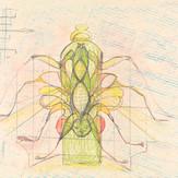 Lápis cera e grafite sobre papel / wax pencil and pencil on paper | 1975 | 37 x 55,1 cm (T026936)