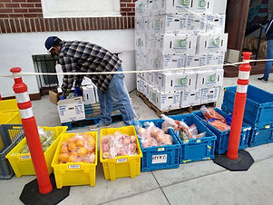 food bank produce.jpg