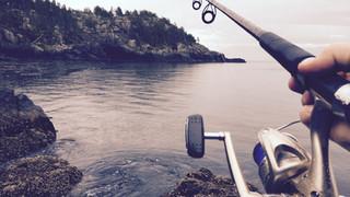 SL16 Fishing Rod