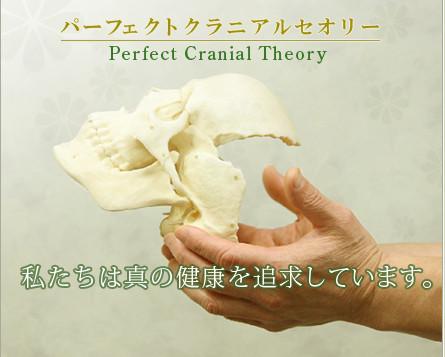 クラニオパシー(頭蓋骨矯正)