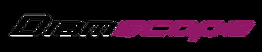 Diamscope logo no background Feb20.png
