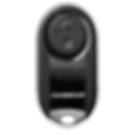 ChamberlainRemote.png