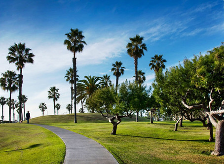 Live In Santa Monica...Lets chat!