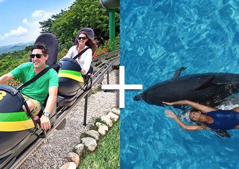 Mystic Mountain + Dolphin Cove