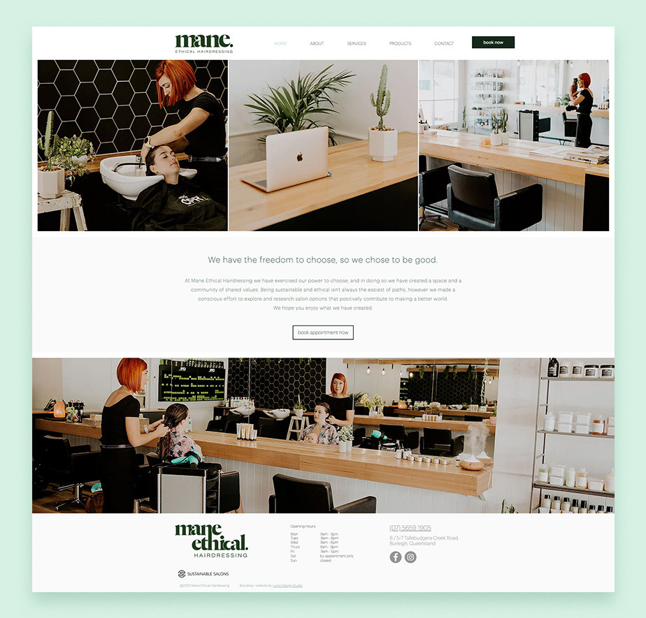 Wix website example by Mane