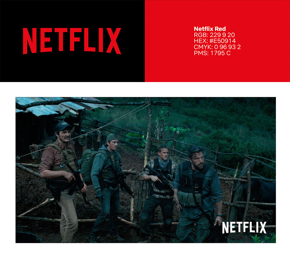 Netflix brand style guide showing logo and color palette