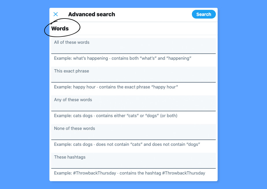 Twitter Advanced Search screen shot