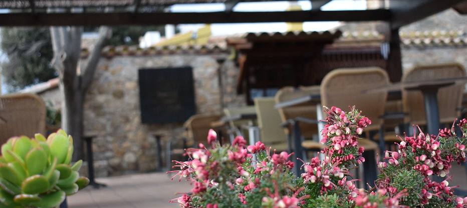 Terraza con flores