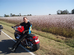 2008-35 Hugo in the Tennessee cotton fie