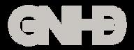 GNホールディングス株式会社