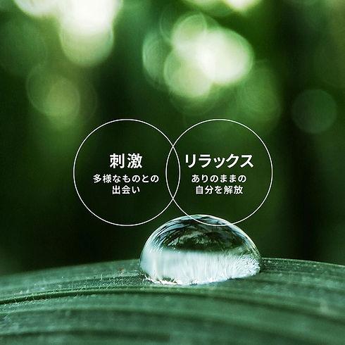 2_ecodistrict_2.jpg