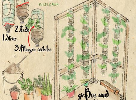 DIY-Workshop Vertikaler Garten