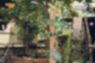 Inselgrün im Innenhof