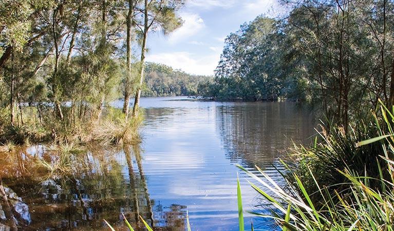 myall lakes 5.jpg