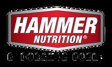 Hammer logo .png