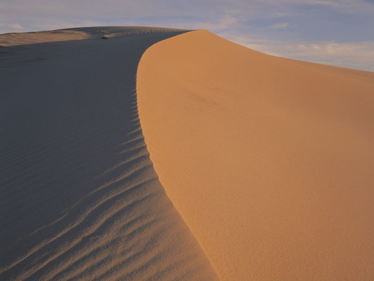 Myall-dune-crest.jpg