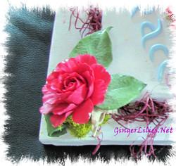 Love Peace Harmony Roses