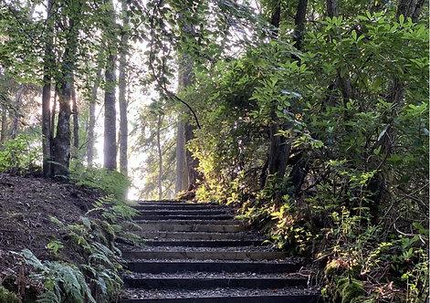 Stairway To Heaven Blank  Greeting Card