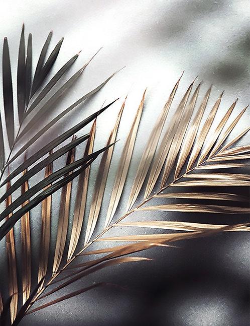 Tropical Gold 4x6 inches Art Print