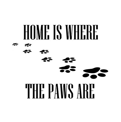 Home Is Where The Paws Are 30x30cm Art Print