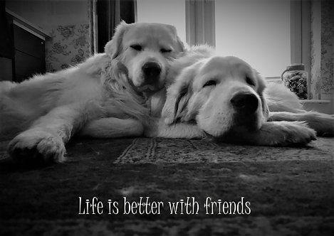 Life Is Better With Friends Greeting Card