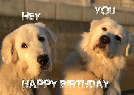 Hey You Happy Birthday Greeting Card