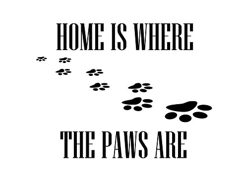 Home Is Where The Paws Are 4x6 inches Art Print