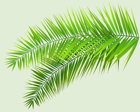 Tropical Leaves III 24x30cm Art Print