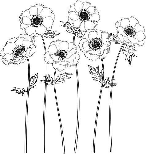 Floral Line II 30x30cm Art Print