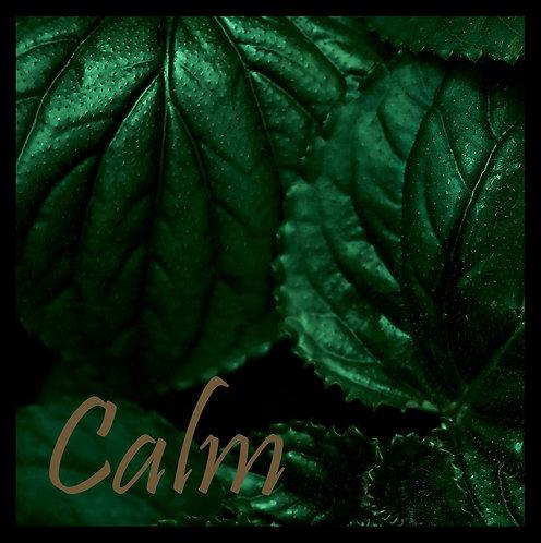 Tropical Calm 30x30cm Art Print